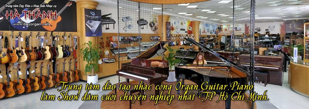 banner-giua-new-1
